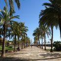 Reis naar Palma de Mallorca